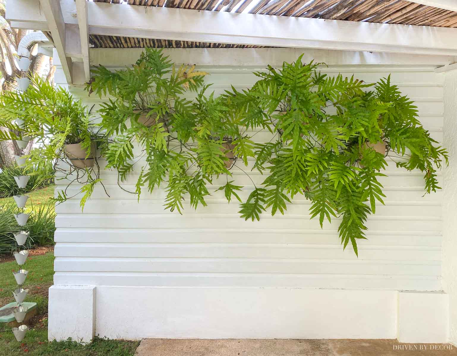 Love the idea of adding wall mounted planter holders to a blank outdoor wall!